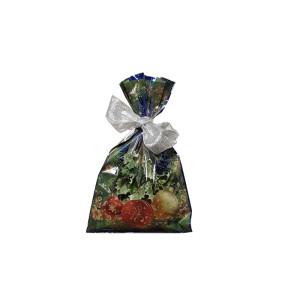 Busta vischio 22×35 fondo traforato blu (100pz)
