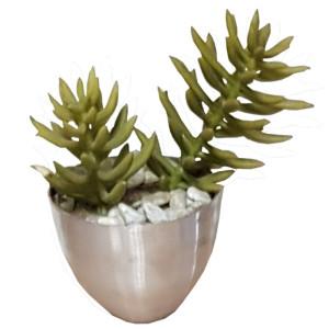Succulent in vaso alluminiio