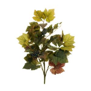 Vite bush con grappoli