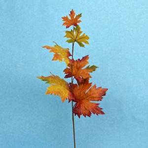 Acero ramo cm.65 arancio