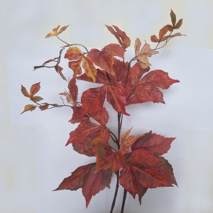 Acero 17 foglie cm.78 marrone