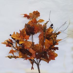 Vite bush con bacche brown
