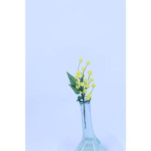 Mimosa cm.25 giallo