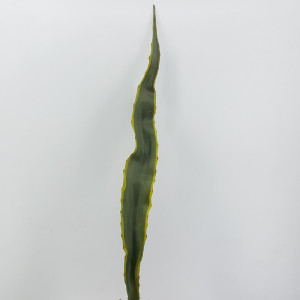 Aloe foglia cm.87 verde